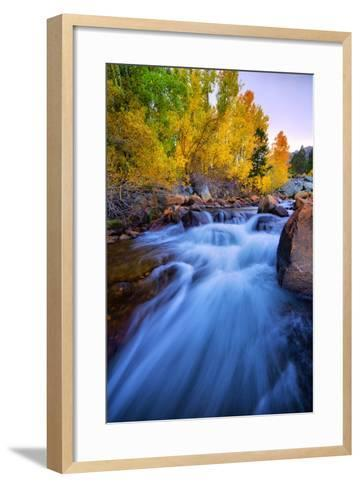 Autumn in Bishop Creek, Mountains, Eastern Sierras-Vincent James-Framed Art Print