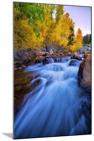 Autumn in Bishop Creek, Mountains, Eastern Sierras-Vincent James-Mounted Photographic Print