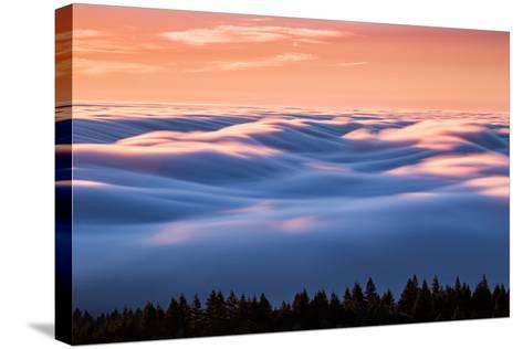 Drifting Above The Fog, Mount Tamalpais, San Francisco-Vincent James-Stretched Canvas Print