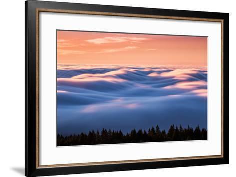 Drifting Above The Fog, Mount Tamalpais, San Francisco-Vincent James-Framed Art Print