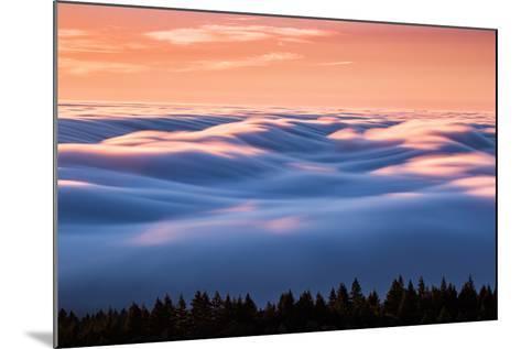 Drifting Above The Fog, Mount Tamalpais, San Francisco-Vincent James-Mounted Photographic Print