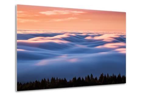 Drifting Above The Fog, Mount Tamalpais, San Francisco-Vincent James-Metal Print