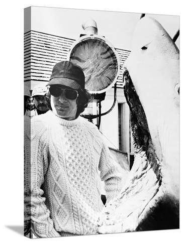 Steven Spielberg, Jaws, 1975--Stretched Canvas Print