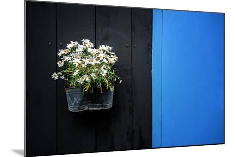 Black on Blue-Philippe Sainte-Laudy-Mounted Photographic Print
