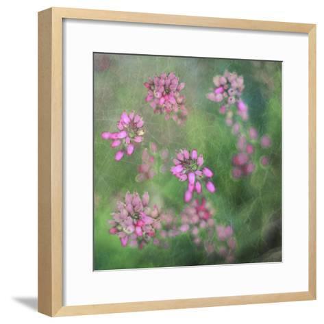 Wildflowers-Viviane Fedieu Daniel-Framed Art Print