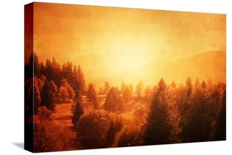 Morning's Broken-Philippe Sainte-Laudy-Stretched Canvas Print