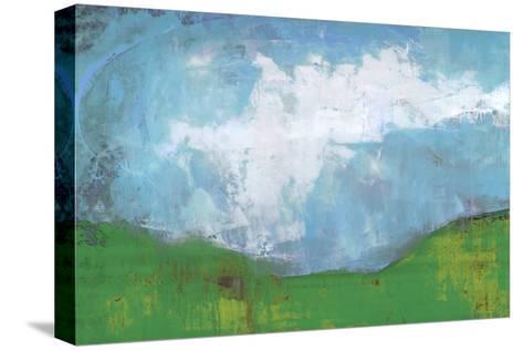 Seeking Wisdom II-Karen Suderman-Stretched Canvas Print