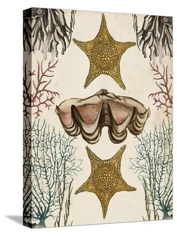 Antiquarian Menagerie - Starfish-Naomi McCavitt-Stretched Canvas Print