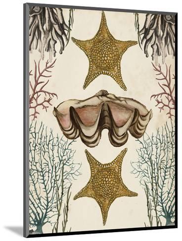 Antiquarian Menagerie - Starfish-Naomi McCavitt-Mounted Art Print