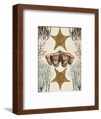 Antiquarian Menagerie - Starfish-Naomi McCavitt-Framed Art Print
