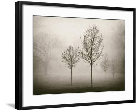 Trees in Fog VII-Jody Stuart-Framed Art Print