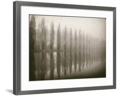 Trees in Fog V-Jody Stuart-Framed Art Print
