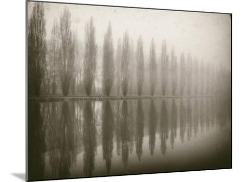 Trees in Fog V-Jody Stuart-Mounted Photographic Print