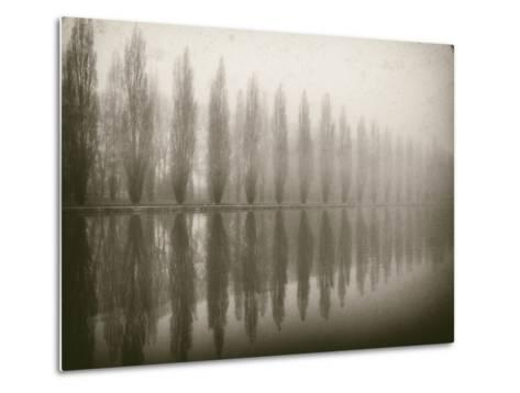 Trees in Fog V-Jody Stuart-Metal Print