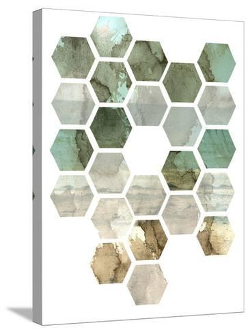 Hexocollage II-Pam Ilosky-Stretched Canvas Print