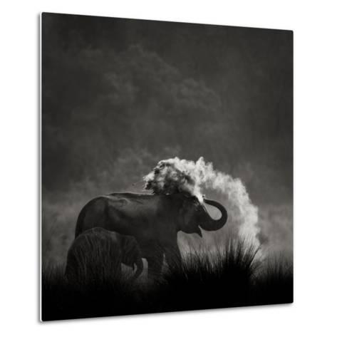 Mud Bath-Ganesh H Shankar-Metal Print
