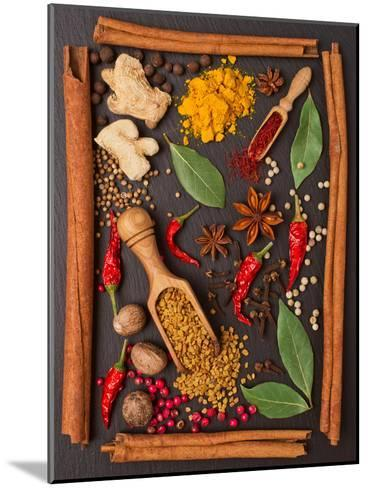 Still Life with Spices and Herbs in the Frame-Andrii Gorulko-Mounted Photographic Print