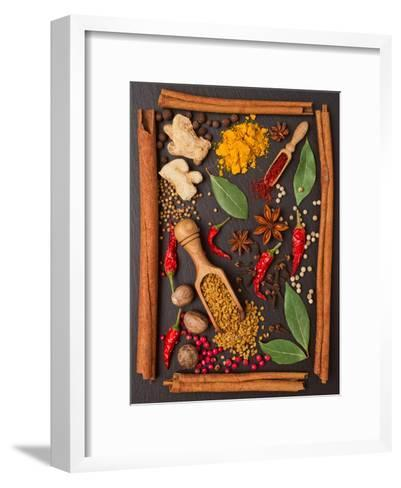 Still Life with Spices and Herbs in the Frame-Andrii Gorulko-Framed Art Print
