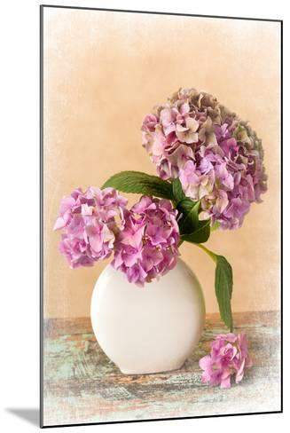 Painterly Textured Flower Still Life on Old Wooden Board- Anyka-Mounted Photographic Print