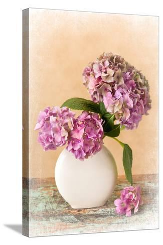 Painterly Textured Flower Still Life on Old Wooden Board- Anyka-Stretched Canvas Print