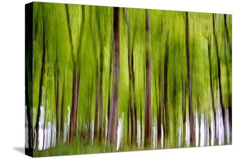 An Abstract Created by Intentional Camera Movement-John Lunt-Stretched Canvas Print