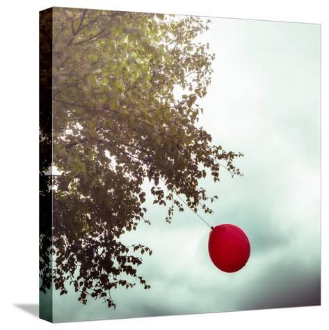 A Red Balloon Hanging on a Tree-Joana Kruse-Stretched Canvas Print
