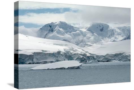 Neko Harbor, Andvord Bay, Antarctic Peninsula-dani3315-Stretched Canvas Print