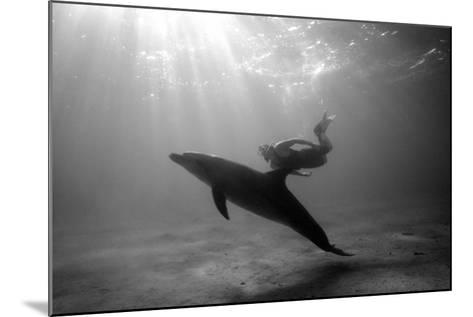 A Black and White Image of a Bottlenose Dolphin and Snorkeller Interacting Contre-Jour-Paul Springett-Mounted Photographic Print