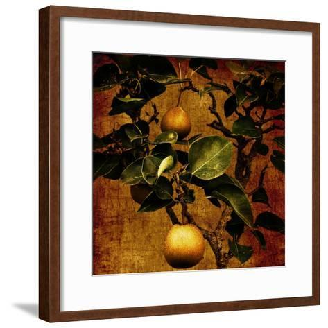 A Bonsai Pear Tree with Two Fruit Against a Rich, Gold Craquelure Background-Trigger Image-Framed Art Print