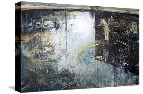 House Refection, 2012-Calum McClure-Stretched Canvas Print