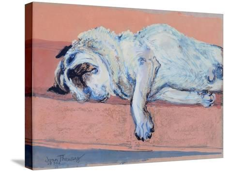 Sleeping Pug Two, 2000-Joan Thewsey-Stretched Canvas Print