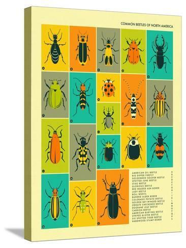Common Beetles of North America-Jazzberry Blue-Stretched Canvas Print