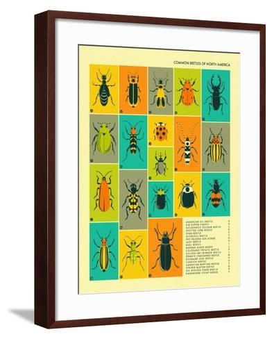 Common Beetles of North America-Jazzberry Blue-Framed Art Print