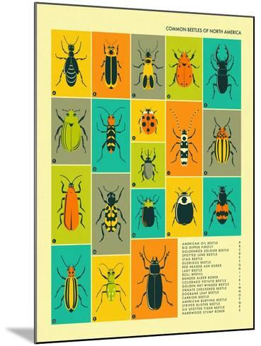 Common Beetles of North America-Jazzberry Blue-Mounted Art Print