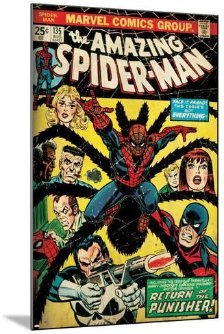 Marvel Comics Retro: The Amazing Spider-Man Comic Book Cover No.135, Return of the Punisher! (aged)--Mounted Art Print