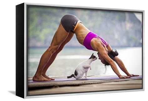 Downward Facing Dog Pose Or Adho Mukha Shvanasana Meets Upward Facing Cat-Cory Richards-Framed Canvas Print