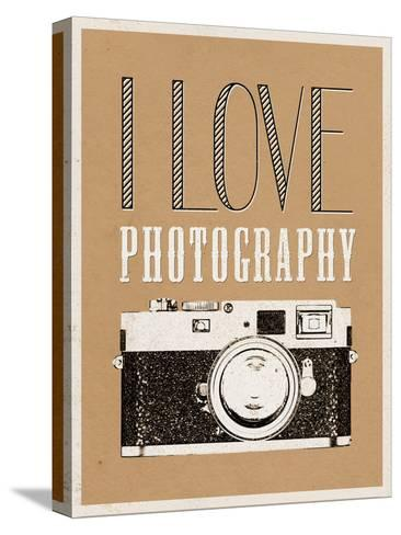 I Love Photography Poster--Stretched Canvas Print