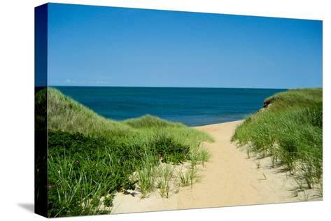 Nantucket Beach Dunes Photo Poster--Stretched Canvas Print