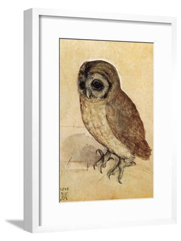 Screech Owl--Framed Art Print