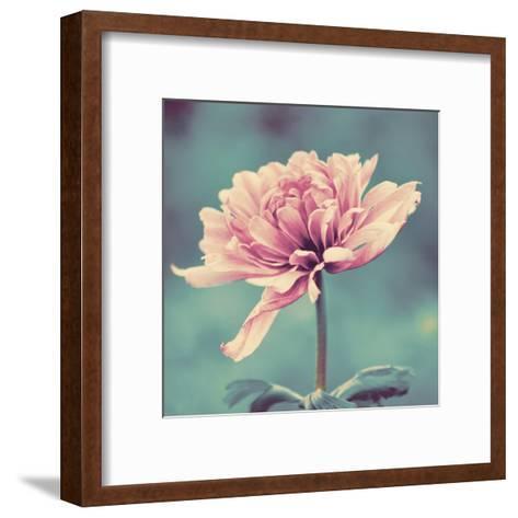 Gorgeous Pink-Gail Peck-Framed Art Print