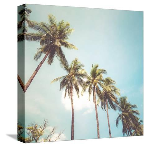 Coconut Palm Tree on Tropical Beach in Summer - Vintage Colour Effect-jakkapan-Stretched Canvas Print
