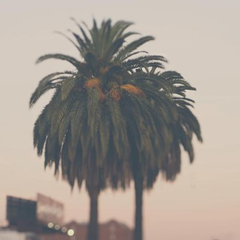 Los Angeles-Laura Evans-Stretched Canvas Print