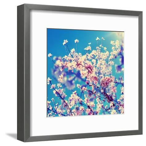 Double Exposure of Almond Trees in Full Bloom-nito-Framed Art Print