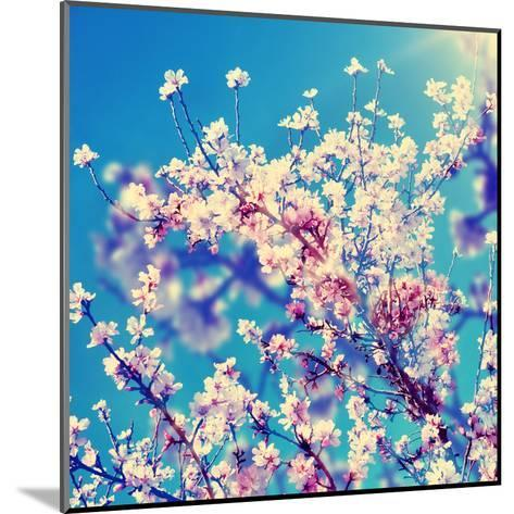 Double Exposure of Almond Trees in Full Bloom-nito-Mounted Art Print