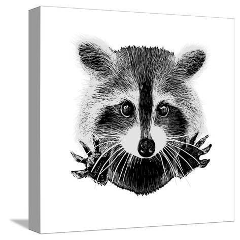 Hand Drawn Raccoon-LViktoria-Stretched Canvas Print