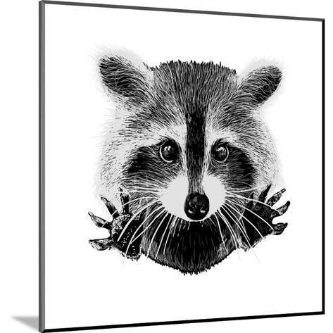 Hand Drawn Raccoon-LViktoria-Mounted Art Print