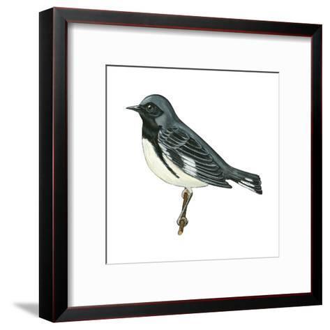 Black-Throated Blue Warbler (Dendroica Caerulescens), Birds-Encyclopaedia Britannica-Framed Art Print