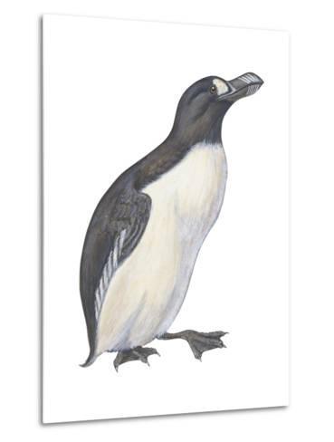 Great Auk (Pinguinnus Impennis), Birds-Encyclopaedia Britannica-Metal Print