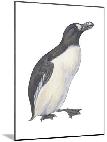 Great Auk (Pinguinnus Impennis), Birds-Encyclopaedia Britannica-Mounted Art Print