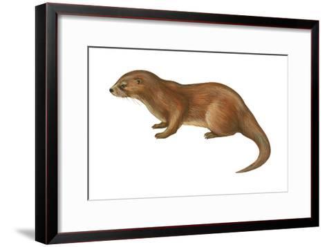 European Otter (Lutra Lutra), Mammals-Encyclopaedia Britannica-Framed Art Print